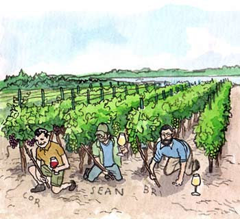 Young winemakers of Old Mission Peninsula